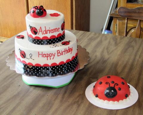 Astonishing Ladybug Birthday Cake Place Personalised Birthday Cards Veneteletsinfo